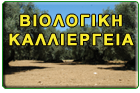 biofin2.jpg
