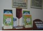 Προσφορά  βιβλίων για Ελιά και Λάδι στα παιδιά των Τουριστών