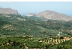Σε περιπέτεια…το κρητικό ελαιόλαδο για το ΠΓΕ Κρήτη