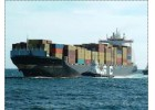 Συμπεράσματα και σχόλια για τις εξαγωγές ελαιολάδου Κρήτης