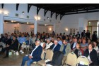 World Olive Day: Expanding Olive Oil Tourism in Crete