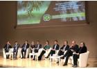 Άμεσα μέτρα για την  ελαιοκομία ζητούν οργανώσεις  στην Ιταλία.