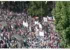 Συλλαλητήρια στην Ισπανία για την κατρακύλα  των τιμών ελαιολάδου
